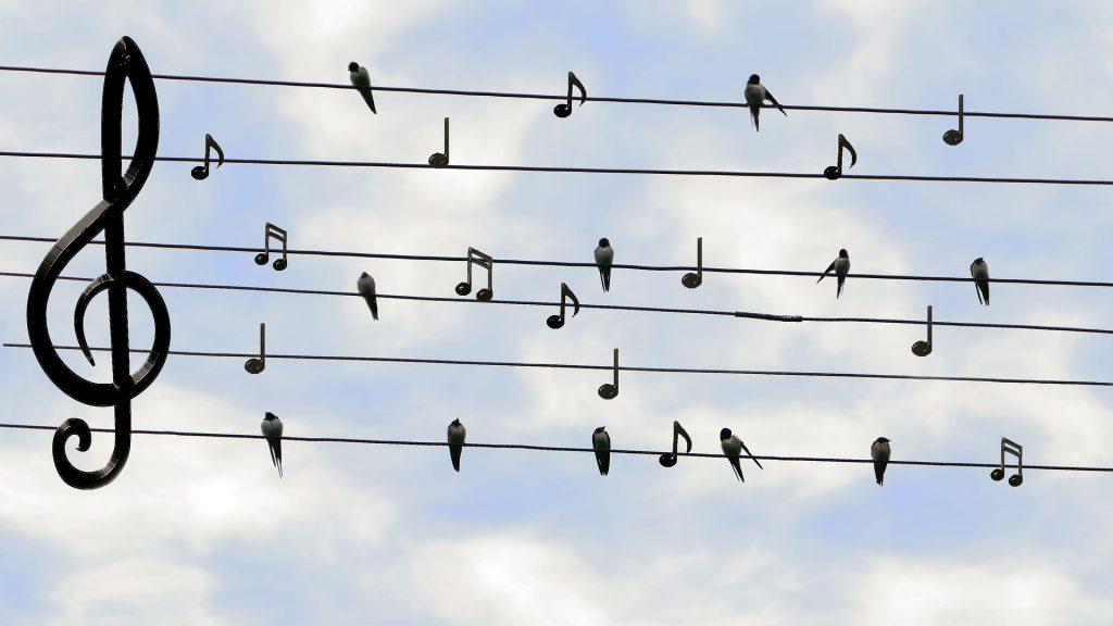 מוזיקה היא לא דבר אוניברסלי