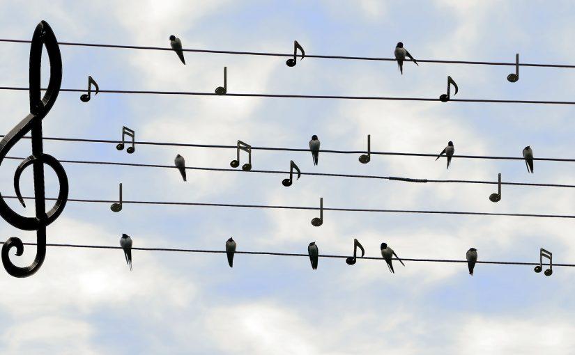 מוזיקה היא לא בהכרח דבר אוניברסלי – הקשר בין מוזיקה לתרבות