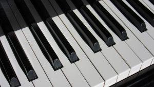 Arranger Keyboards Review